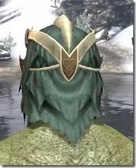 Symphony of Blades Visage - Argonian Male Rear