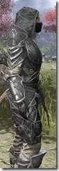 Thieves Guild Iron - Khajiit Female Close Side