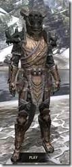 Wood Elf Dwarven - Argonian Male Front