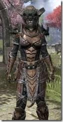 Wood Elf Dwarven - Khajiit Female Close Front