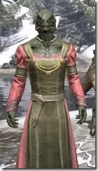 Bardic Tavern Singer's Dress Argonian Male Close Front