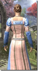 Bardic Tavern Singer's Dress Dyed Close Rear