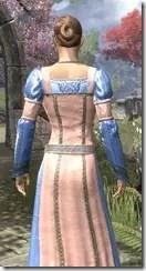 Bardic Tavern Singer's Dress Dyed Close Rear