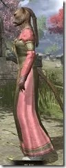 Bardic Tavern Singer's Dress Khajiit Female Side