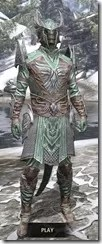 Divine Prosecution Light - Argonian Male Shirt Front