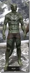 Alftand Glacial Body Tattoos Argonian Male Front