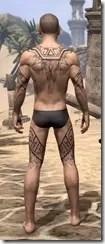 Alftand Glacial Body Tattoos Male Rear