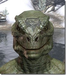 Alftand Glacial Face Tattoos Argonian Male Front