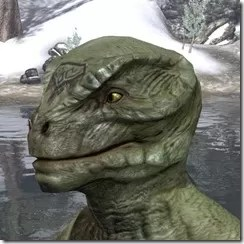 Alftand Glacial Face Tattoos Argonian Male Side