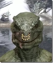 Coral Snake Nose Ring Argonian Male Front