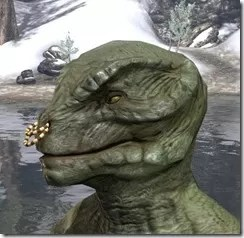Coral Snake Nose Ring Argonian Male Side