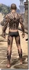 Dwarven Centurion Body Tattoos Male Rear