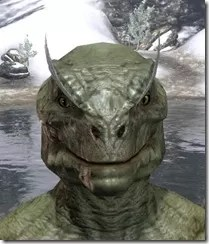 Feather Brows of Mystery Argonian Male Front