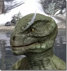 Feather Brows of Mystery Argonian Male Side