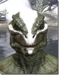 Ghost Goblin Face War Paint Argonian Male Front