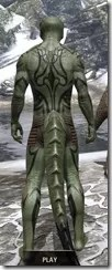 Meridian Radiance Body Tattoos Argonian Male Rear