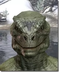 Meridian Radiance Face Tattoos Argonian Male Front