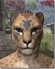 Meridian Radiance Face Tattoos Khajiit Female Front