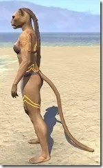 Meridian Sunburst Body Tattoos Khajiit Female Side