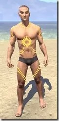 Meridian Sunburst Body Tattoos Male Front