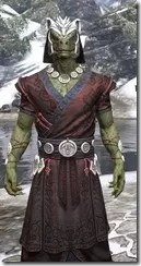 Jode & Jone Light - Argonian Male Robe Close Front