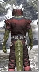 Jode & Jone Light - Argonian Male Shirt Close Rear