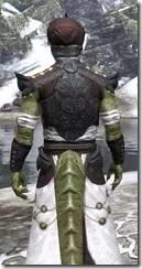Pellitine Light - Argonian Male Robe Close Rear