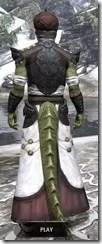 Pellitine Light - Argonian Male Robe Rear