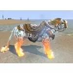 Sunspire Champion Senche-Lion