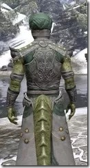Pellitine Homespun - Argonian Male Robe Close Rear