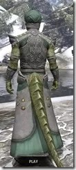 Pellitine Homespun - Argonian Male Robe Rear