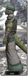 Pellitine Homespun - Argonian Male Robe Side