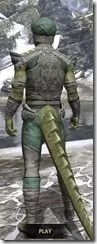 Pellitine Homespun - Argonian Male Shirt Rear