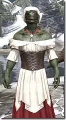 Tavern Maid - Argonian Male Close Front