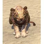 Pedlar Pack Senche-Lion Cub