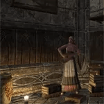 Bosmer Inn Room [NA]
