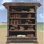 Solitude Bookcase, Noble Filled