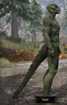 Karthwatch Guardian Body Tattoo - Argonian Male Right