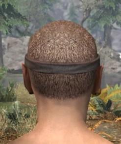 Morthal Jarl Circlet - Male Rear