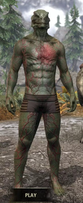 Thrall's Arterial Map Body Marks - Argonian Male Front