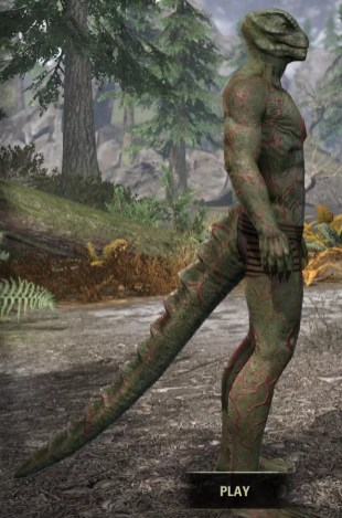 Thrall's Arterial Map Body Marks - Argonian Male Right