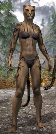 Umbral Snarl Body Markings - Khajiit Female Front