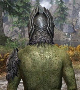 Stone Husk - Argonian Male Rear