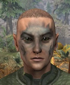 Maddening Mishap Face Markings - Male Front