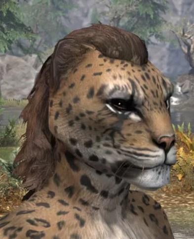 Morthal Champion Face Markings - Khajiit Female Side