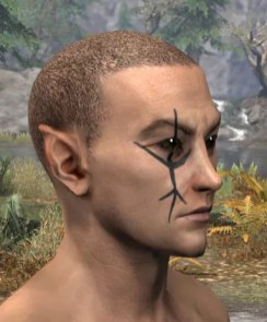 Morthal Champion Face Markings - Male Side