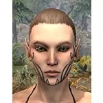 Path of Valor Face Markings