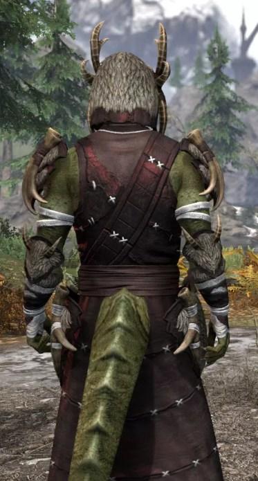 Ancestral Reach Light - Argonian Male Robe Close Rear