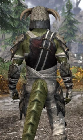 Ancestral Reach Medium - Argonian Male Close Rear