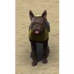Dominion Breton Terrier